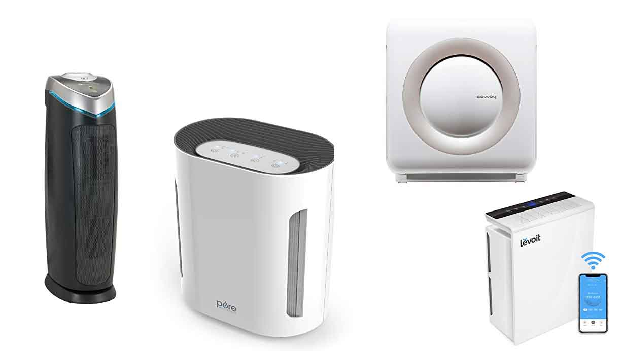 The Best Air Purifier for Mold